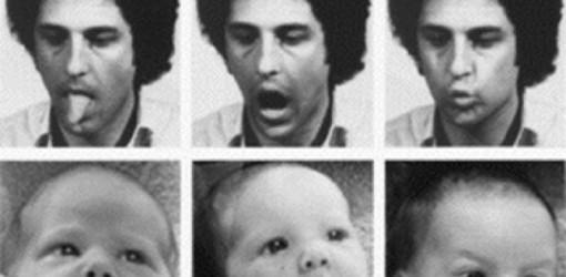 Neonatal Imitation